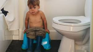 Potty train a boy